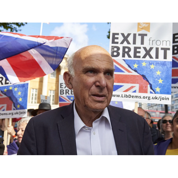 Sir Vince Cable at a #peoplesvote march in 2017 (Photograph: Niklas Hallen/AFP/Getty Images)